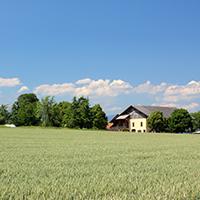 l'eglise dans la campagne